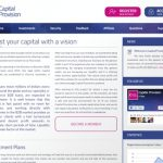 CapitalProvision.com — Платит, обзор и отзывы
