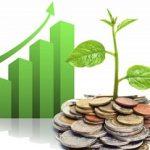 Советы начинающему Хайп-инвестору