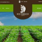 Eco-tobac.co — Не платит, скам
