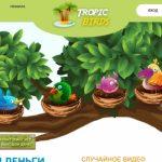 Tropic-birds.biz — Не платит, скам